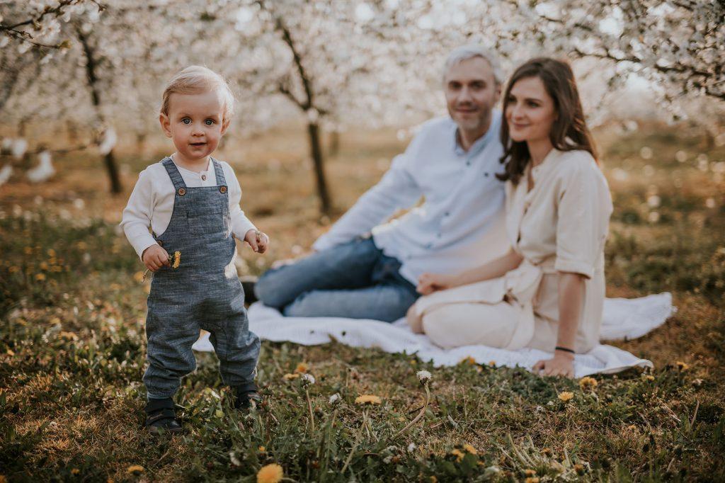 wiosenna sesja rodzinna kwitnący sad